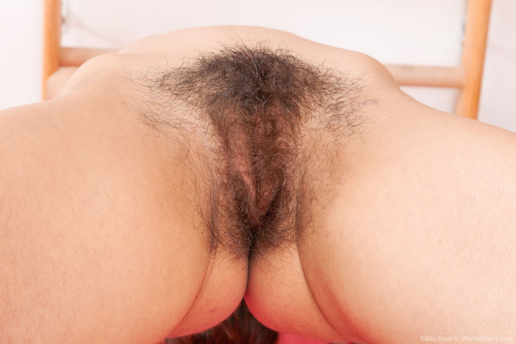 Hairy Close Up Penetration